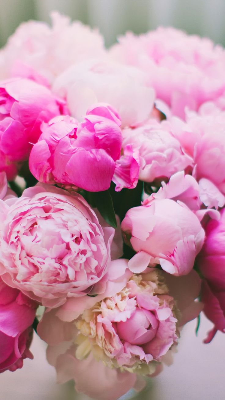 Pink Peonies Arrangement