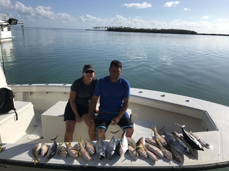 Fearless Fishing Report for Nov. 18 (#Islamorada, FL): Today we fished a full day and we had a great day with a mixed bag. We caught some #Blackfin #Tuna, a couple of #Kingfish, a few #Bonitos and our limit of #Yellowtail #Snapper. The weather got nicer throughout the day. We had around 15 knots of wind to start and then it came down to around 5 knots and calm seas  #fearless #fishing #charter #conch27 #captjoehendrix #keysstrong #offshore #florida #fish