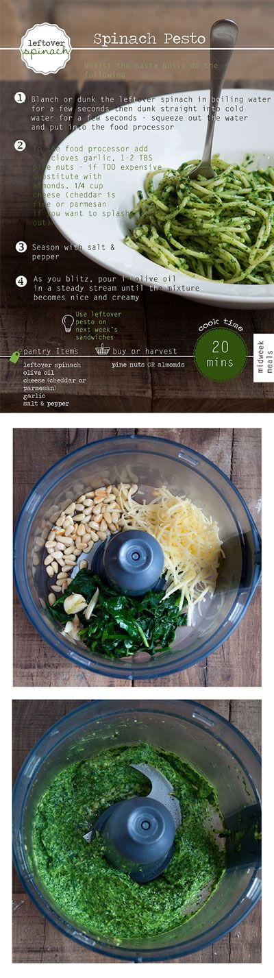 A delicious way to eat leftover Spinach! 20 Minutes to Make Spinach Pesto Pasta!