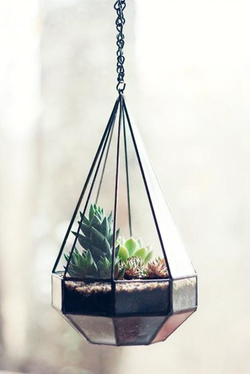 1000 id es sur le th me terrarium suspendu sur pinterest plantes accrocher - Porte verre suspendu ...