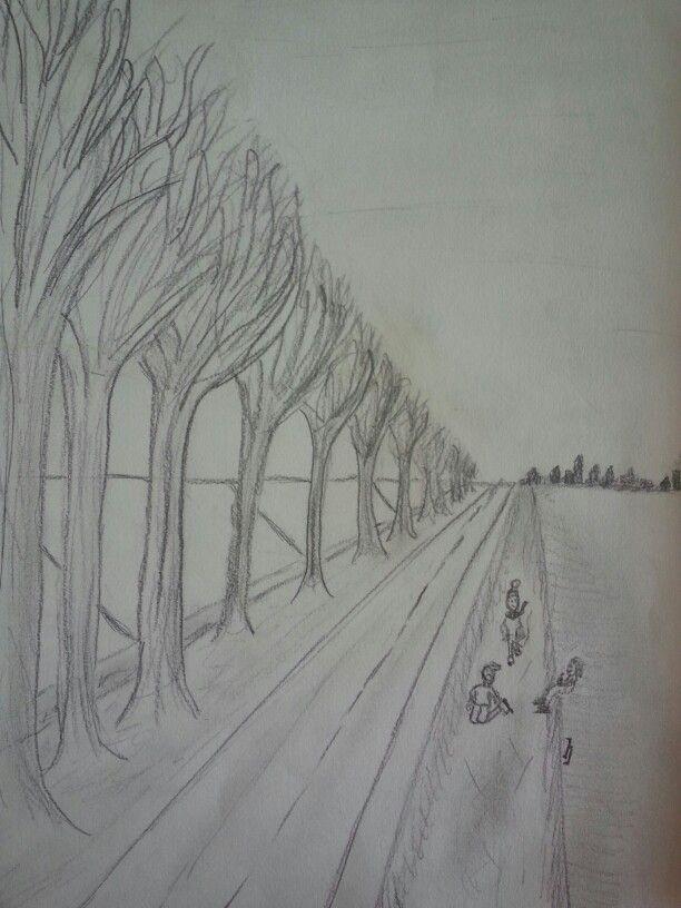 Bomenlaantje in perspectief