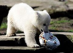 Let's play soccer...