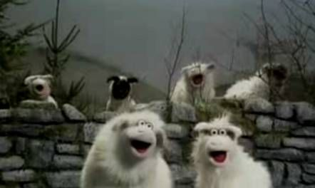 Sheep are wool-bearing mammals and a lynchpin of the textile industry. They traditionally gather in flocks, and must be carefully herded. In nursery rhymes, they are said to follow their owners to school, and come home wagging their tails behind them.  An assortment of sheep, including rams and lambs, were featured on The Muppet Show.