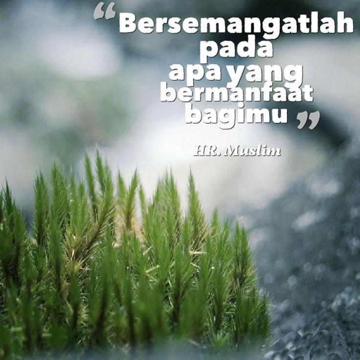 http://nasihatsahabat.com #nasihatsahabat #mutiarasunnah #motivasiIslami #petuahulama #hadist #hadis #nasihatulama #fatwaulama #akhlak #akhlaq #sunnah  #aqidah #akidah #salafiyah #Muslimah #DakwahSalaf # #ManhajSalaf #Alhaq #Kajiansalaf  #kajiansunnah #Islam #bersemangatlah #Semangat #PadaApaYangbernanfaatBagikita