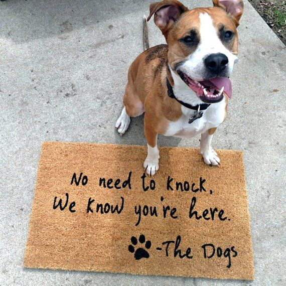 No Need To Knock Dog Doormat Funny Dog Lover Gift Welcome Mat