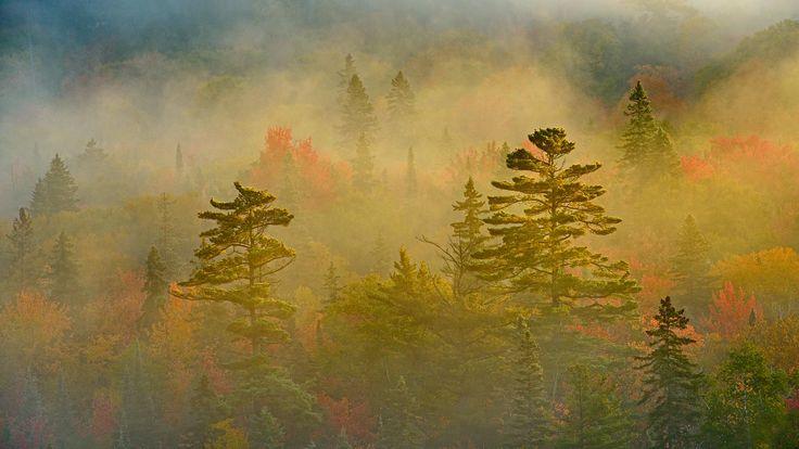11月21日、スペリオル湖州立公園