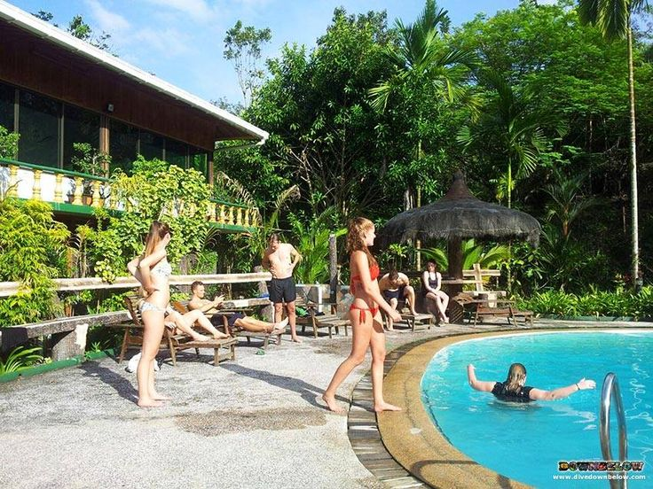At the Sepilok Jungle Resort, the group have a dip to cool off from the heat of the Borneo sun and the humidity of Sabah's primary rainforest!