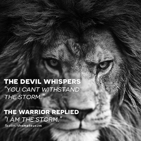 Don't worry what they whisper, just know YOU ARE THE STORM. @bennyesco11 ❗️️️️TAG FRIENDS. ➖Comment and share. ❗️Number one for motivation and success on iTunes and Spotify CLICK THE LINK IN OUR BIO. ➖Pic credit @themateuszm #FearlessMotivation #iamthesto