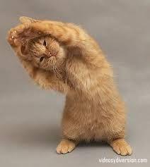 Bailando, me paso el día bailando....