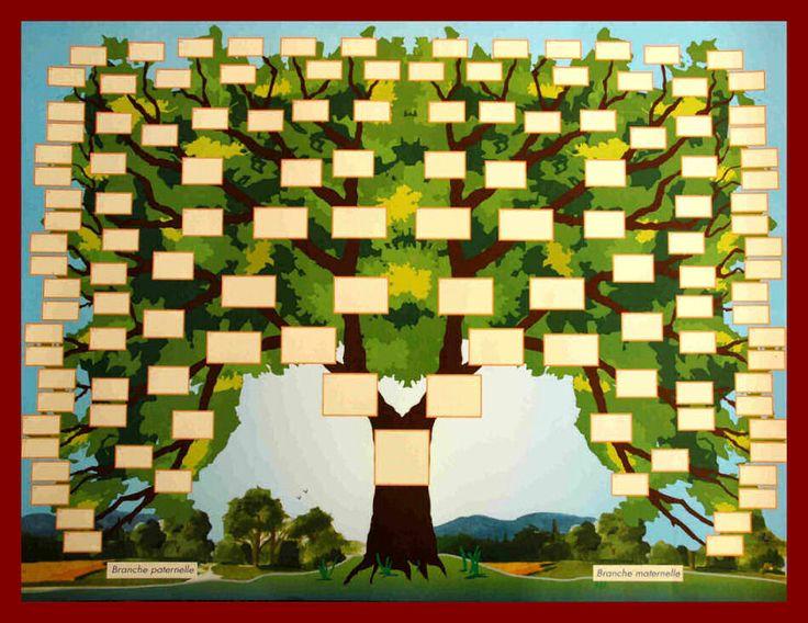 Arbre généalogique en forme d'arbre sept générations