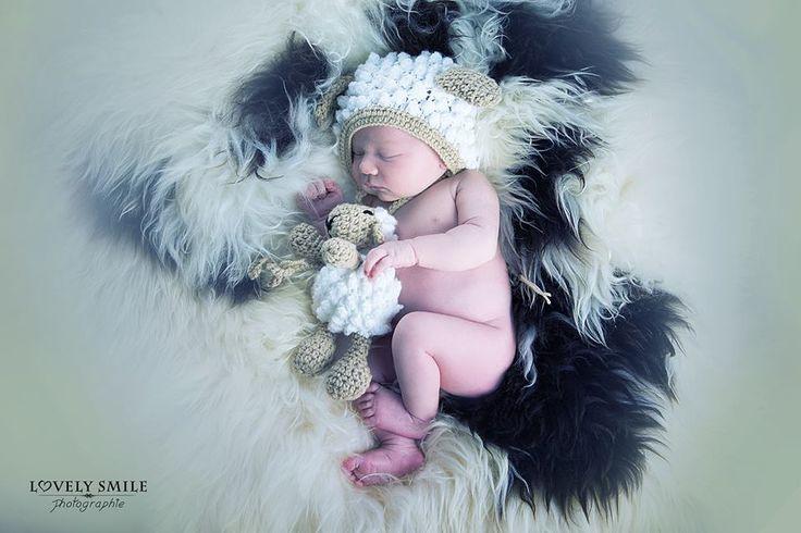 petit mouton tout mignon by lovely smile photographie