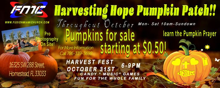 Harvesting Hope Pumpkin Patch at Fusion Miami Church in Homestead, FL