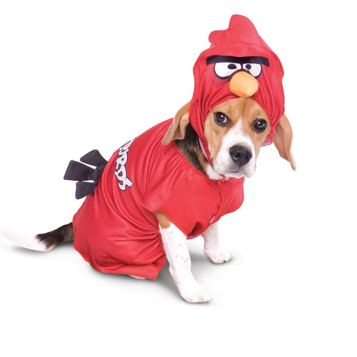 Rovio Angry Birds Red Bird Pet Costume from Buycostumes.com