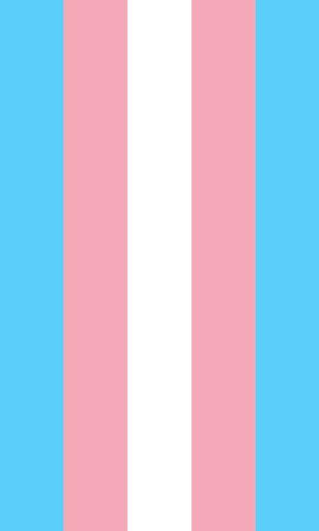 Trans Pride Flag, Trans Flag, Trans Boys, All Pride Flags, Pride Colors, Flag Colors, Transgender Quotes, Transgender Boys, Lgbtq Flags