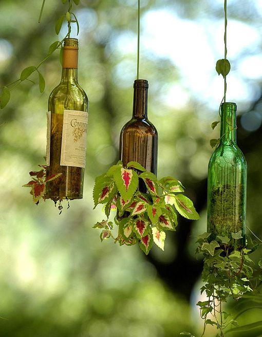 botellas de vino como maceteros colgantes