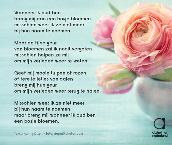 Citaten Over Bloemen : Best geurende gedichten en spreuken images on