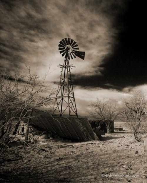 Schafer Windmill