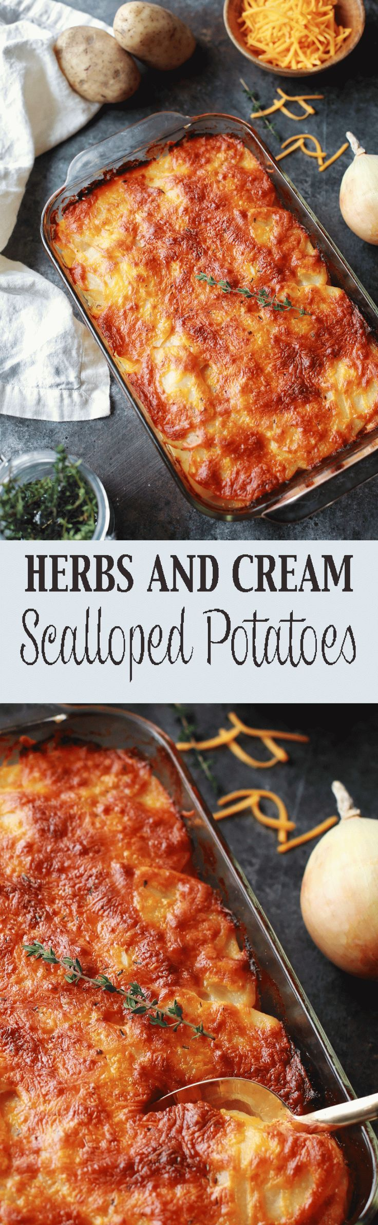 WOW! These Scalloped Potatoes were amazing. My family literally fought over who got the last helping... Make a double batch!