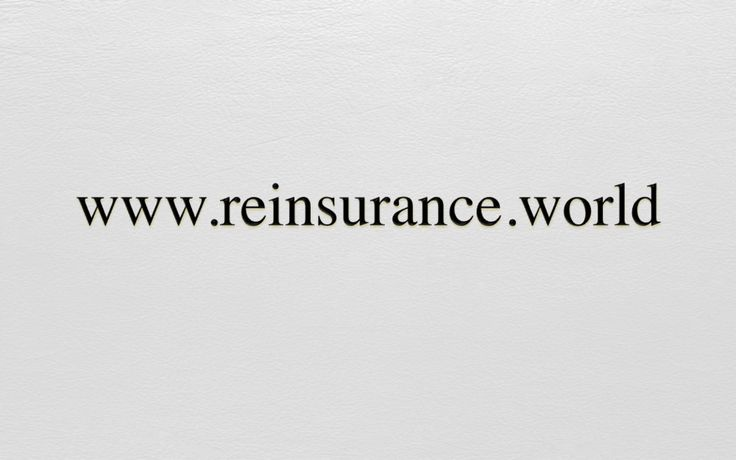 www.reinsurance.world Premium Domainname Verfügbar für Akquisition auf / Nom de Domaine Premium Disponible pour Acquisition sur / Premium Domain Name Available for Acquisition on www.spotnet.ch für / pour / for 20'000.- CHF
