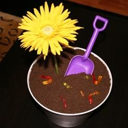 Dirt Cake!  My best friend's mom used to make this for her birthday when we were younger!  :)