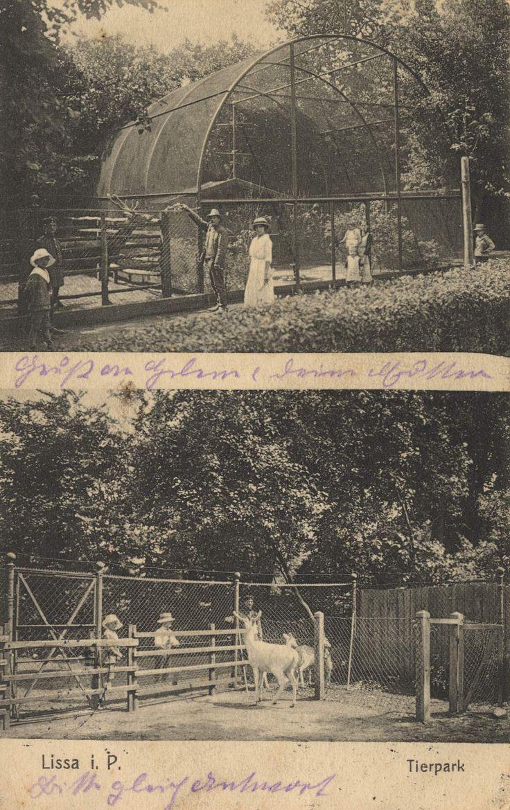 Lissa, Posen: Zoologischer Garten