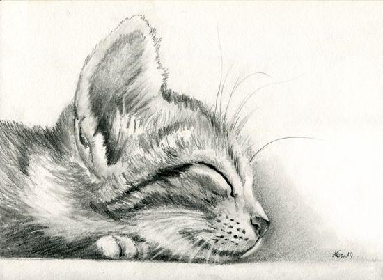 sleeping Kitten by art-it-art.deviantart.com on @deviantART...Graphit, Bleistift Zeichnung auf 200 Gramm Künstlerpapier ...Tiger Kitten ...original Pencil drawing ...Format: 18 x 25 cm - 7 x 10 inches