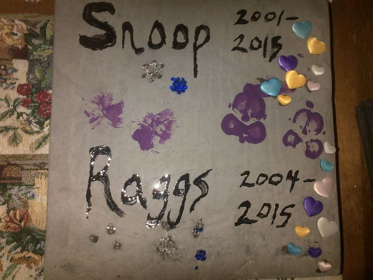 The purple prints belong to Kira & Turd .. saying good-bye to their brothers