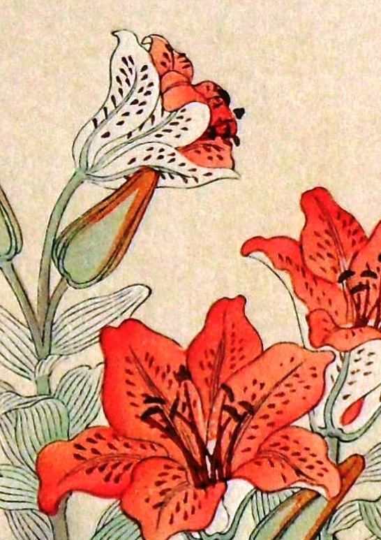 """Vintage japanese woodblock print """"Tiger Lily and Sparrow"""""""