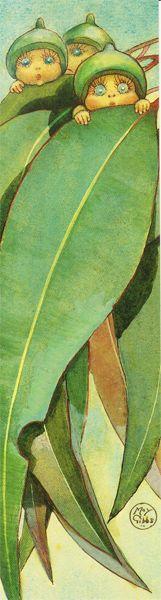 Bookmark Peeping Gumnuts