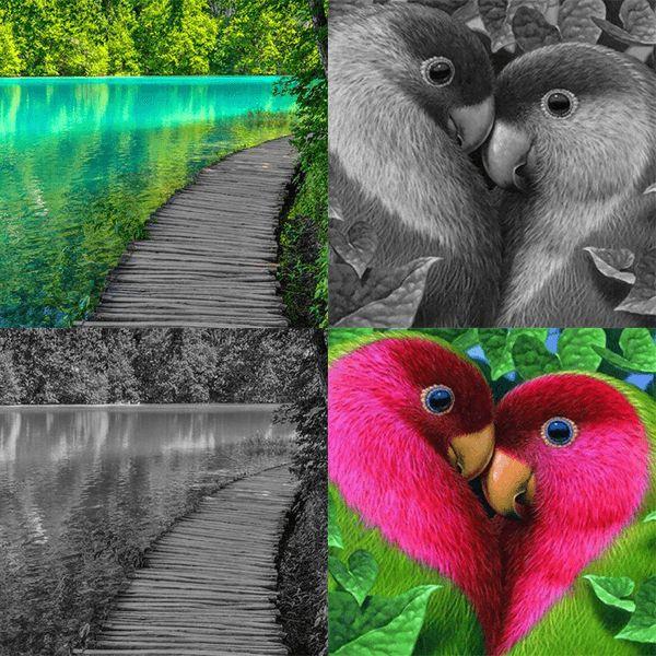 31 best Les couleurs de peinture images on Pinterest Paint colours - comment choisir sa peinture