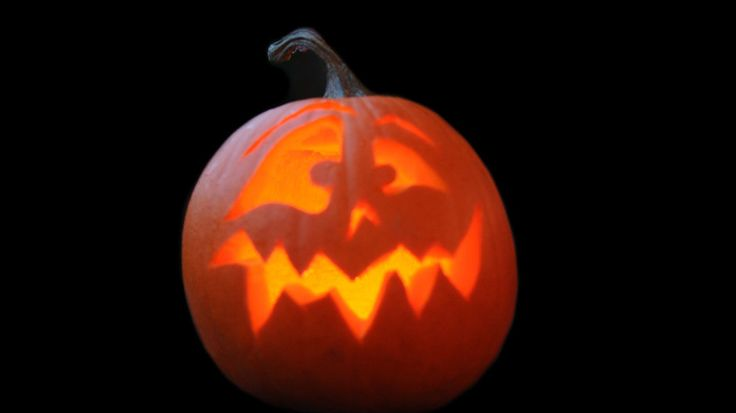 Best 25 Small Pumpkin Carving Ideas Ideas Only On