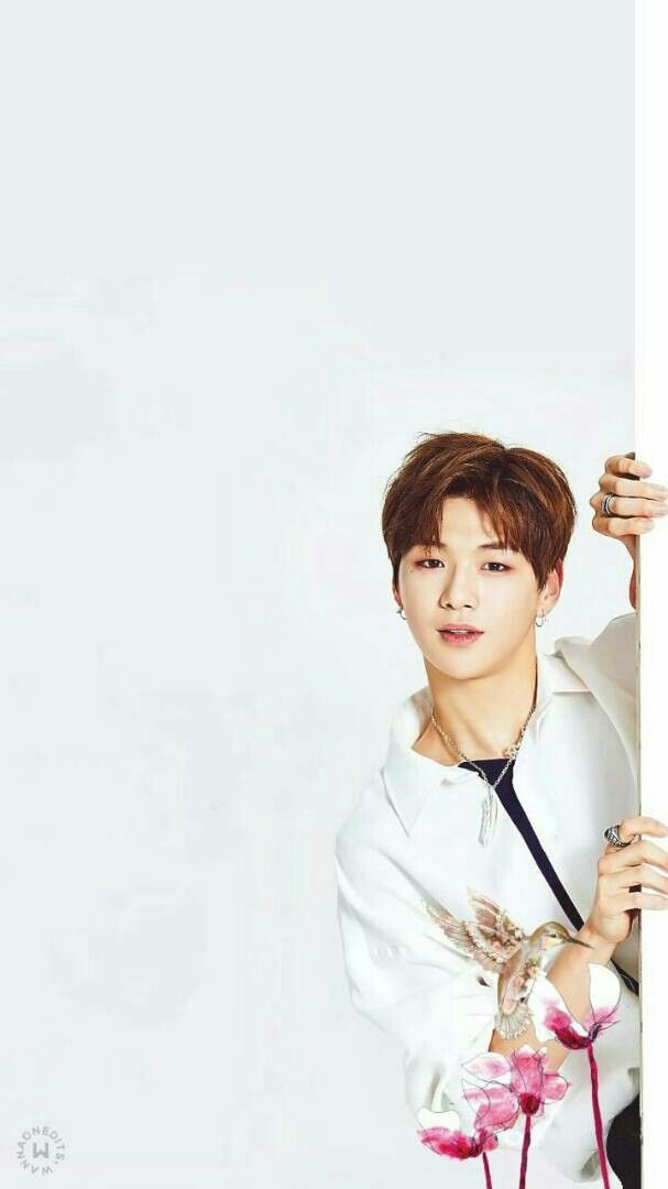 Kang Daniel Wanna One Kpop Produce 101 Season 2 Dan