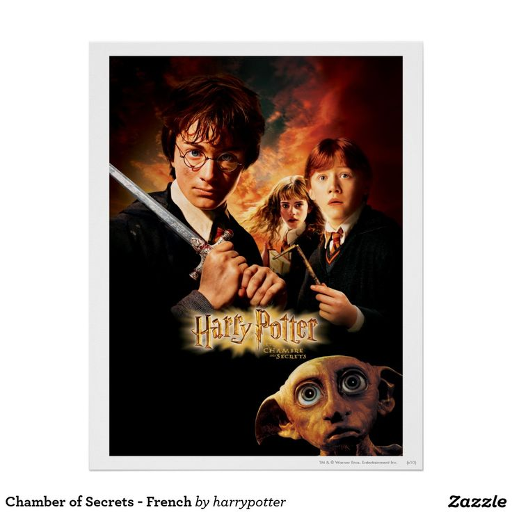 Chamber of secrets french poster harry potter movie for French chamber