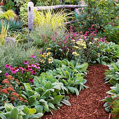 641 best images about flower borders cottage gardens on for Easy maintenance flowers