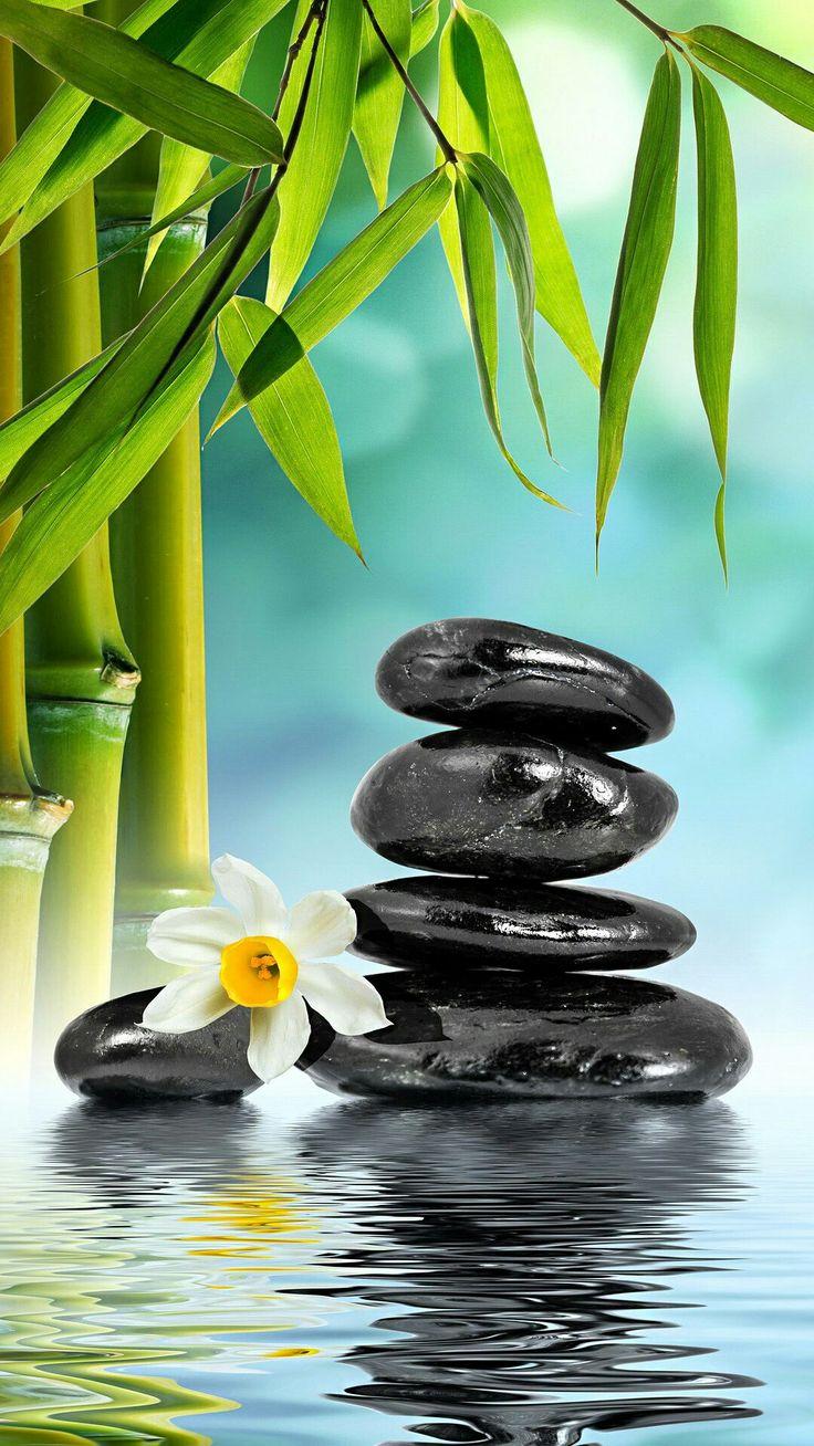 красивые картинки дзен многие