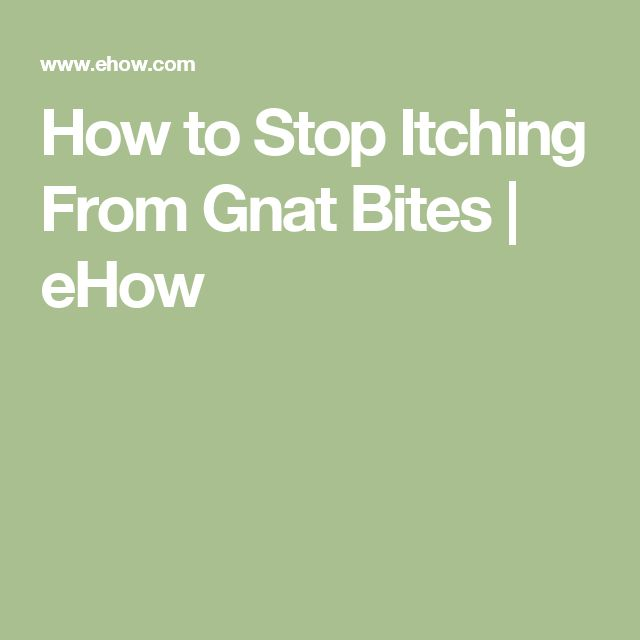 How to Stop Itching From Gnat Bites | eHow