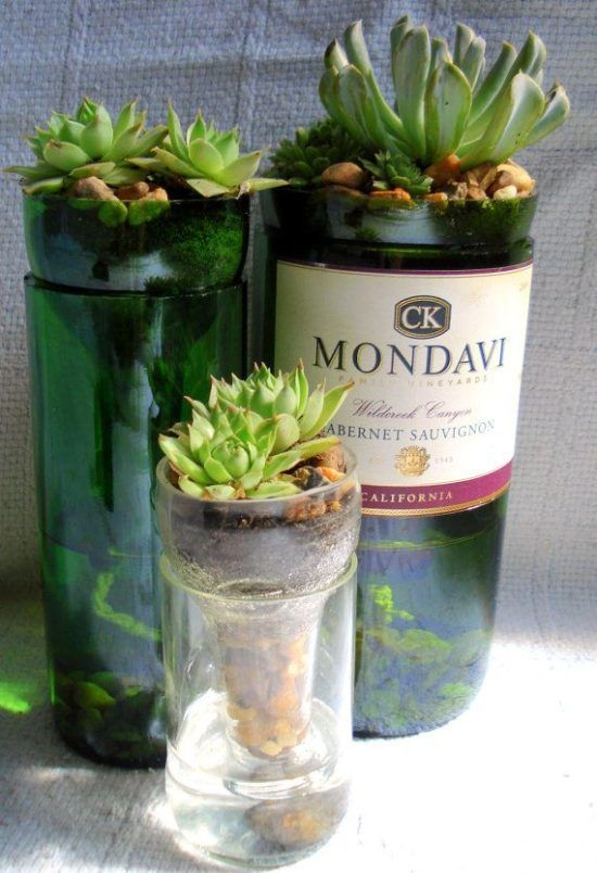 Wine Bottle Planter Watch The Video Tutorial