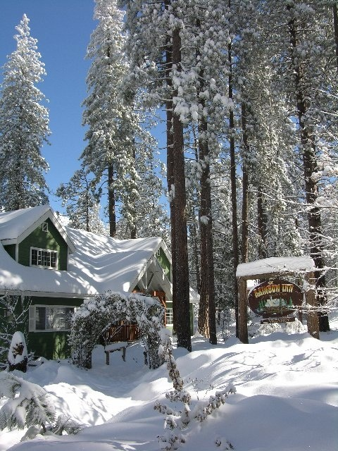 Image result for idyllwild snow
