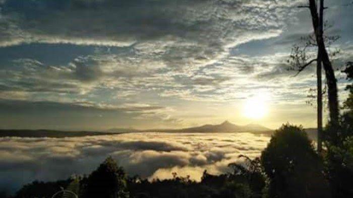 Pemandangan Alam Di Atas Gunung