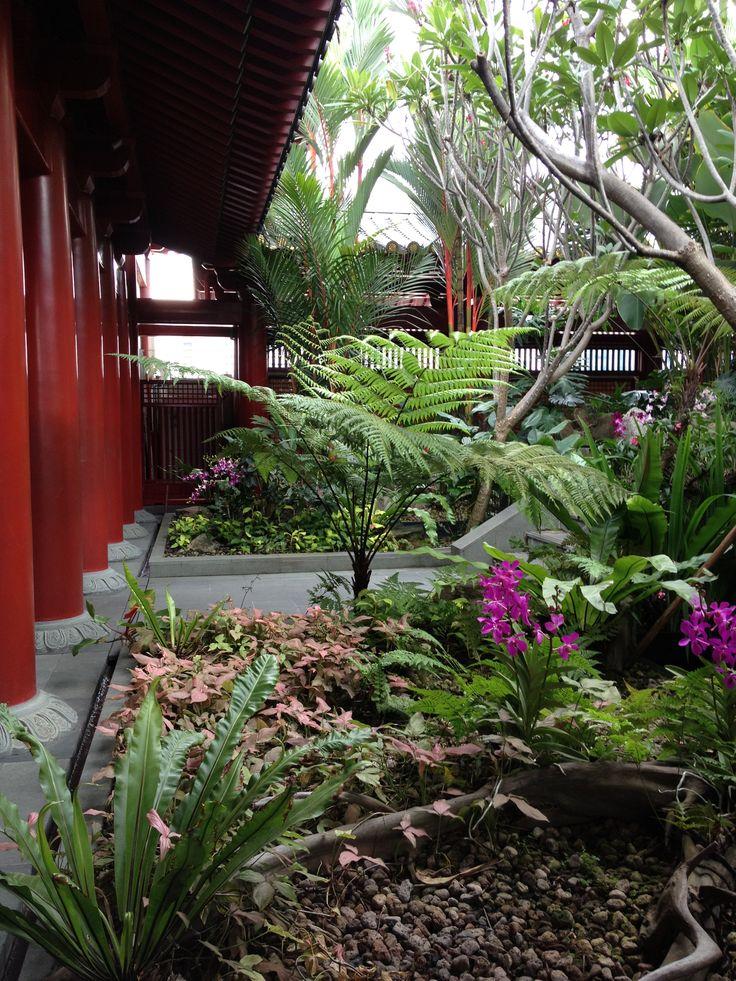 Rooftop garden, Singapore