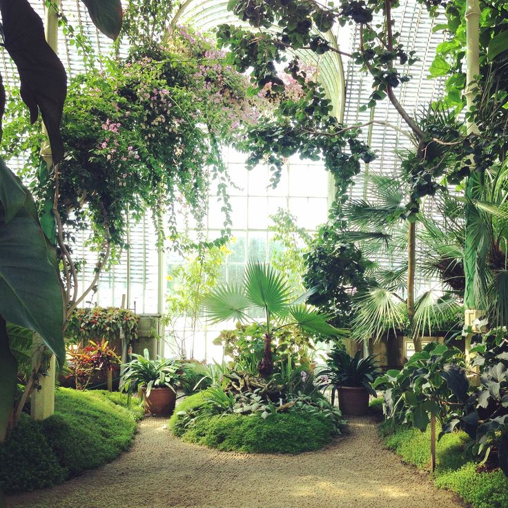 At Lednice Castle there's a beautiful Palm House. Once you've seen this I don't thing a simple green house or orangery will ever do.