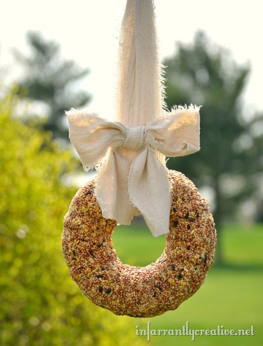 Bird Seed Wreath for my little friends...