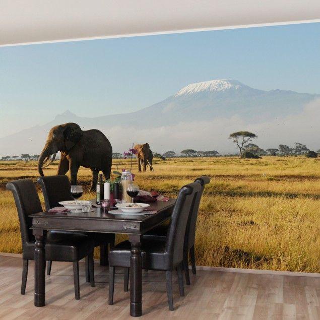 #Vliestapete Premium - #Elefanten vor dem #Kilimanjaro in #Kenya - Fototapete Breit #naturpur #nature #Tapete #Sonne #Landschaft #freedom #Natur #Afrika
