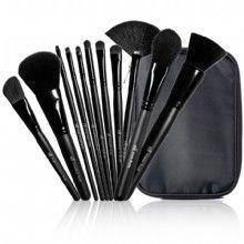 ELF 11 piece brush set and case. $30