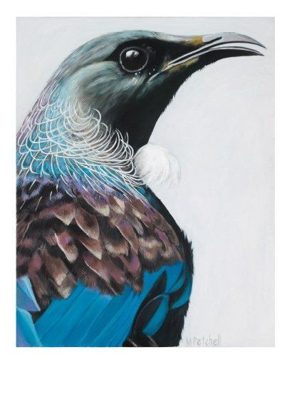'Parson' by Margaret Petchell, NZ artist. (NZ Tui.) 260NZD. (Nov 2013.) Beautiful blue feathers.
