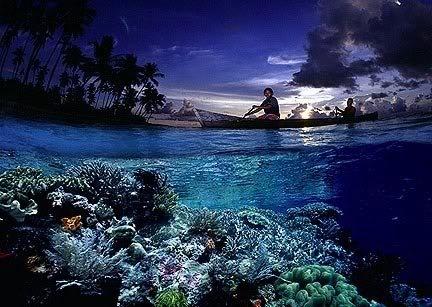 Wakatobi, Marine Tourism Park, Sulawesi.