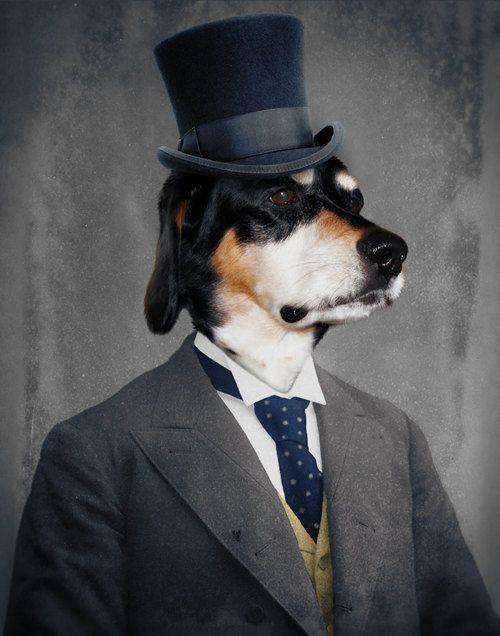 Pet Portrait Dapper Dog Top Hat Dog Veterinarian Print Veterinary Gift for Dog Lover Pet Lover Canadian Seller 11x14 Print - Monsieur Ben