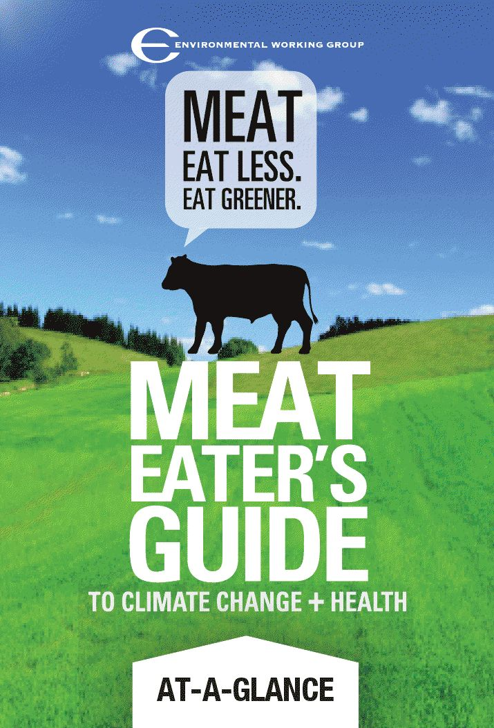 There are many environmental and health issues to consider when making the choice between being a carnivore and a vegetarian. If you are a meat eater, check out this guide to eating meat (greenly) complete with helpful #infographics. #smartliving: Health Food, Eating Meat, Food Choice, Meat Eater, 2011 Meat, Eater Guide, Health Wel, Environment Work, Eating Greener