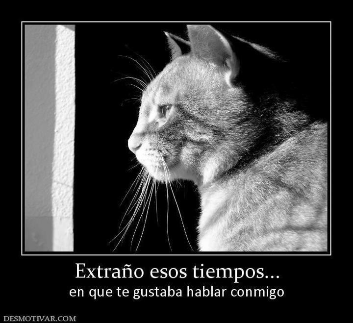 Sad I Miss You Quotes For Friends: Ya No Volveremos A Hablar No Nos Volveremos Tampoco A Ver