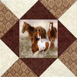 Horse Round Up Quilt Blocks Kit